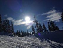 Fluiter Heli Skiing Stock Foto's