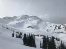 Fluiter Heli Skiing Royalty-vrije Stock Afbeelding