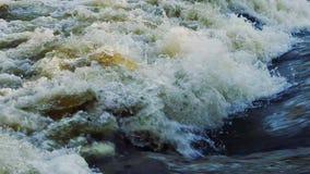Flujo de agua en el primer del río almacen de video