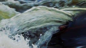 Flujo de agua en el primer del río almacen de metraje de vídeo