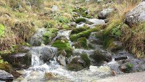 Flujo de la cala de la montaña con el sonido almacen de metraje de vídeo