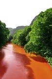 Flujo del río rojo Imagen de archivo libre de regalías