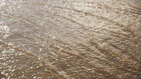 Flujo rápido de agua almacen de video