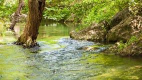 Flujo tranquilo del río entre las rocas y los árboles almacen de metraje de vídeo