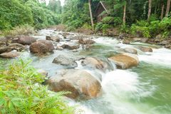 flujos de corriente abajo de la montaña Foto de archivo