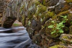 Flujos de corriente rápidos debajo de un arco de piedra histórico Imágenes de archivo libres de regalías