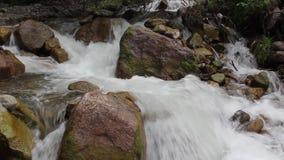 Flujos ?speros del r?o de la monta?a entre piedras grandes almacen de video