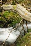 flume Royaltyfri Fotografi