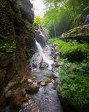 Flume Gorge Franconia Notch NH Stock Image