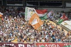 Fluminense X Palmeiras Immagine Stock