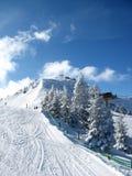 flumserberg κάνοντας σκι Στοκ Φωτογραφία