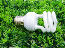 Fluorescence lamp on artificial grass Stock Images