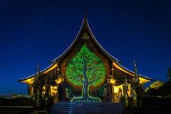 Fluorescencyjny drzewo Obraz Stock