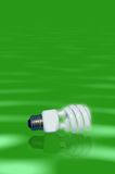 Fluorescent bulb. A fluorescent bulb the lighting of tomorrow, on a green background with a reflection stock images