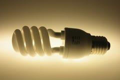Fluorescent Bulb Stock Photos