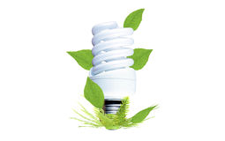 Fluorescent bulb as a symbol of environmental conservation Royalty Free Stock Photo
