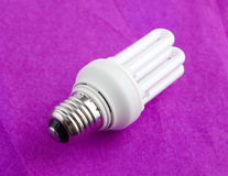 Fluorescent lamp. Compact energy saving fluorescent lamp Royalty Free Stock Image
