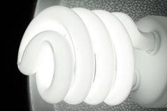 Fluorescent Lamp Stock Images