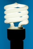 Fluorescent Light Bulb Stock Photos