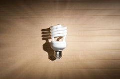 Fluorescent light bulb Royalty Free Stock Image