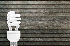 Fluorescent Light Bulb Royalty Free Stock Photos