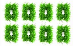 Fluorescent light bulbs  Stock Image