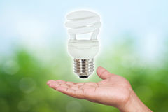 Fluorescent light bulbs in hand Royalty Free Stock Images
