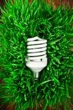 Fluorescent lightbulb on grass Stock Photos