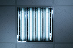 Fluorescent lights in office ceiling Royalty Free Stock Photo