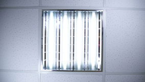 Fluorescent lights in office ceiling stock video