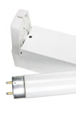 Fluorescent Tube. Close Up of Fluorescent Tube stock photo