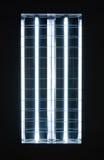 Fluorescente Fotografia Stock Libera da Diritti