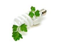Fluorescente energie - besparings gloeilamp Stock Afbeelding