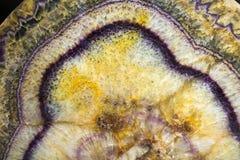 Fluorite från Derbyshire, England Royaltyfri Fotografi