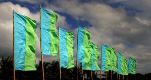 A flurry of green flags. Royalty Free Stock Images