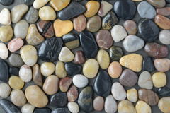 Flush Pebble Stone and River Rock Background Royalty Free Stock Photography