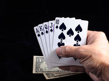 Flush royal cards on hand Stock Photography