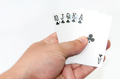 Flush royal in the hand Royalty Free Stock Photos