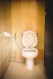 Flush toilet Stock Images