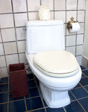 Flush toilet Stock Photography