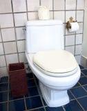 Flush toilet Stock Photography