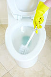 Flush Toilet. Cleaning Stock Photography