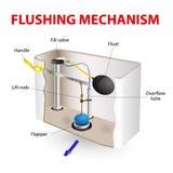 Flushing mechanism Flush toilet. Flush toilet flushing mechanism vector diagram. How Its Made stock illustration