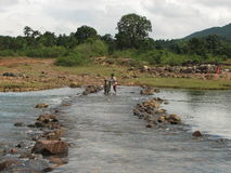 Flussüberquerung Lizenzfreies Stockfoto