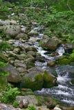 Fluss 2 Stockfotografie