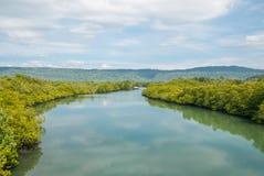 Fluss. Lizenzfreie Stockfotografie