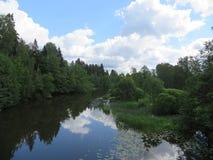 Fluss lizenzfreie stockbilder