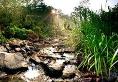 Fluss Lizenzfreie Stockfotografie
