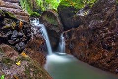 Fluss am Affe-Wald, Ubud, Bali, Indonesien Lizenzfreie Stockfotografie