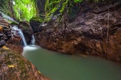 Fluss am Affe-Wald, Ubud, Bali, Indonesien Stockbilder